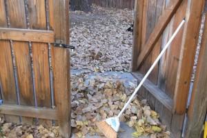 Kids can have fun helping with yard work.