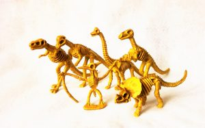 Dinosaur skelton are a great addition to some sensory play boxes. Make fun dinosaur party favor